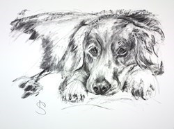 Time for a rest by April Shepherd -  sized 24x18 inches. Available from Whitewall Galleries