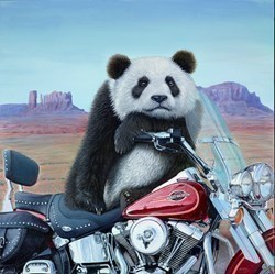 Born to be Wild by Steve Tandy -  sized 24x24 inches. Available from Whitewall Galleries