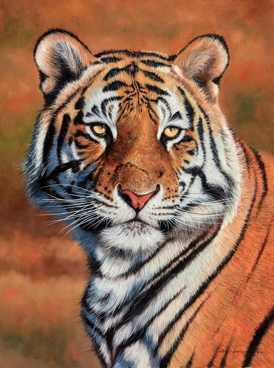 Sunlit Tiger