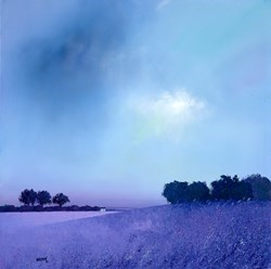 Lavender Blues IV by Barry Hilton -  sized 24x24 inches. Available from Whitewall Galleries