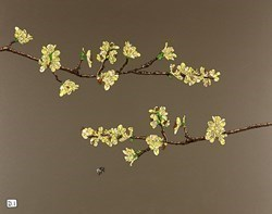 Yellow Blossom by Dylan Izaak -  sized 28x22 inches. Available from Whitewall Galleries