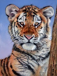 Tiger in the Snow  by Pip McGarry -  sized 18x24 inches. Available from Whitewall Galleries
