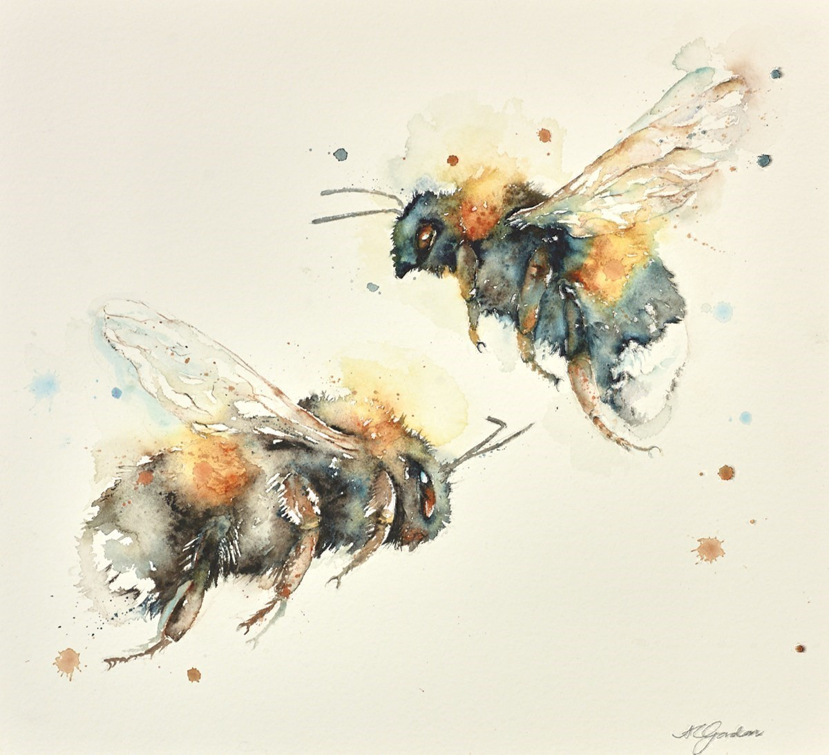 Two Bumblebees