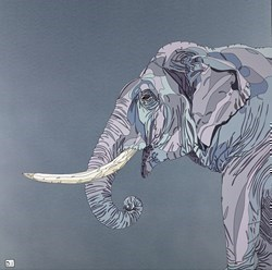 Elephant III by Dylan Izaak -  sized 36x36 inches. Available from Whitewall Galleries