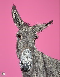 Donkey on Pink by Dylan Izaak -  sized 22x28 inches. Available from Whitewall Galleries