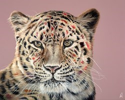 Hot Spots by Hayley Goodhead -  sized 30x24 inches. Available from Whitewall Galleries