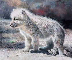 Wolf Cub by Pip McGarry -  sized 12x10 inches. Available from Whitewall Galleries