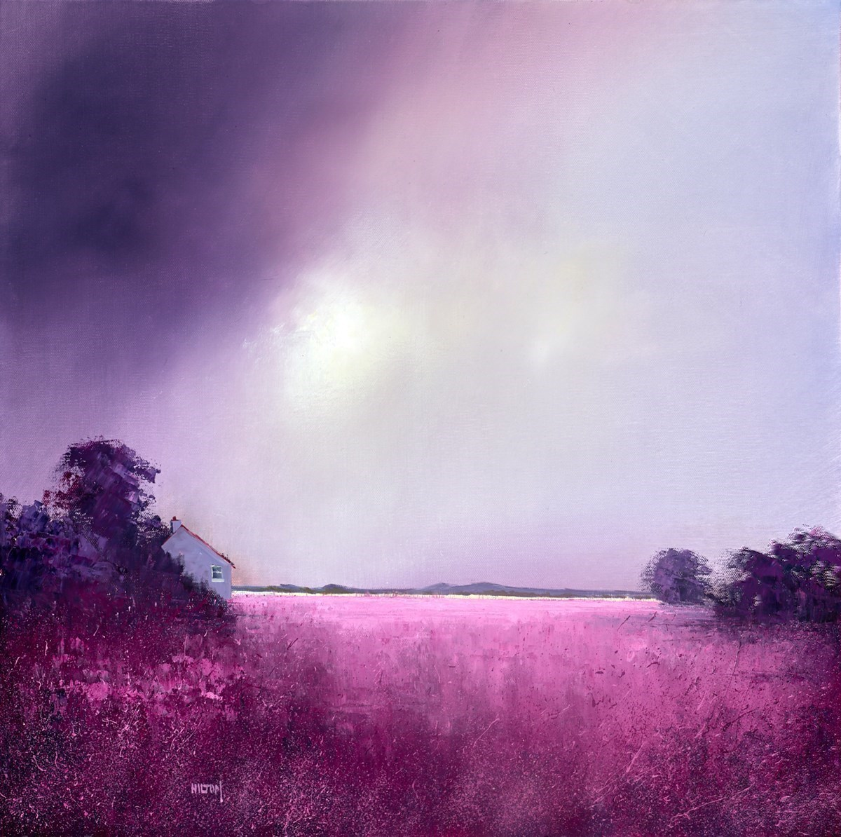 Magenta Sunrise II by Barry Hilton -  sized 24x24 inches. Available from Whitewall Galleries