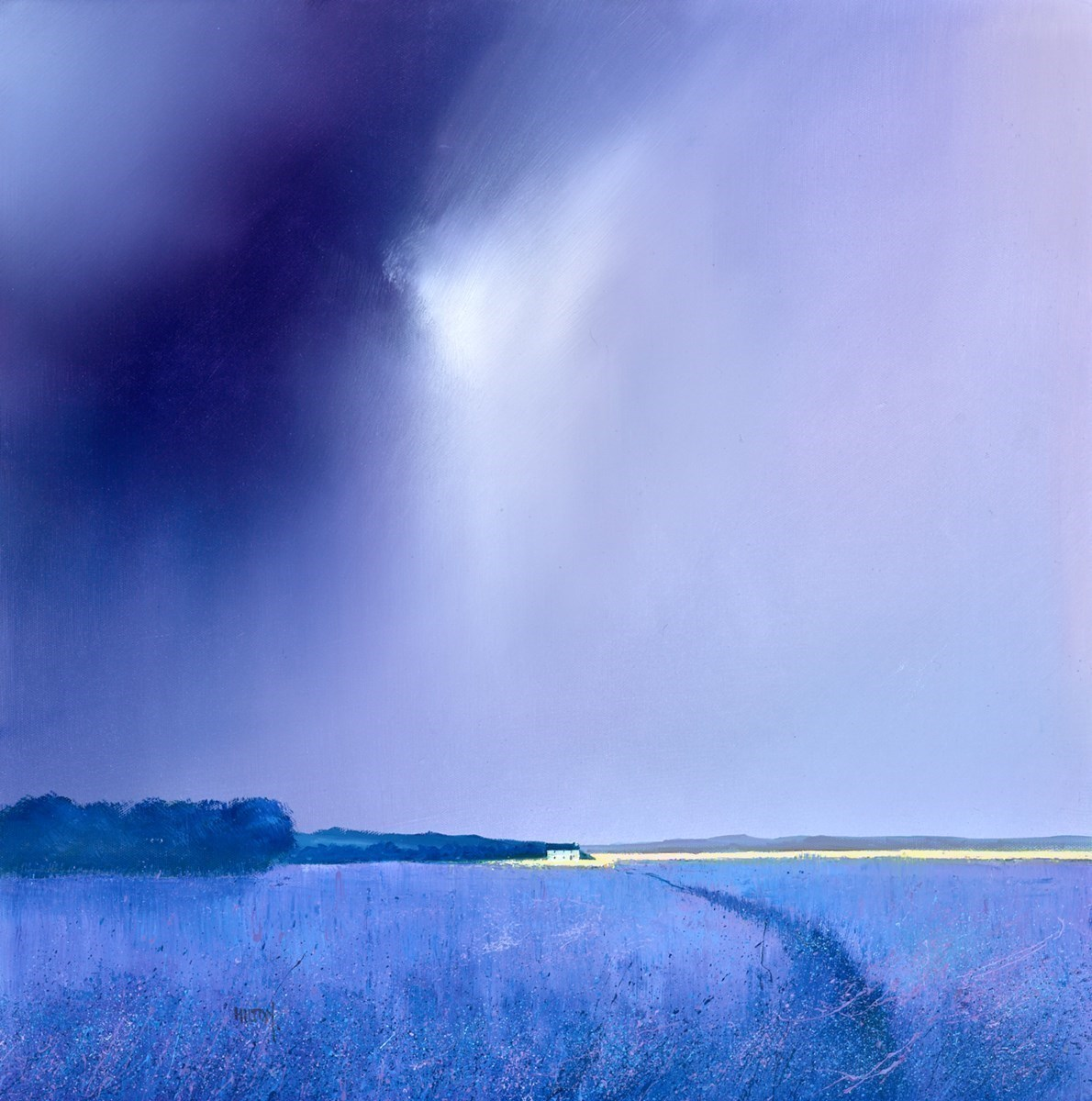 Calm Before the Storm by Barry Hilton -