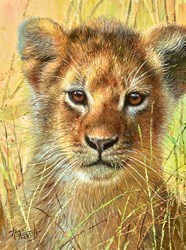 Baby of Maasia Mara  by Tony Forrest -  sized 8x10 inches. Available from Whitewall Galleries