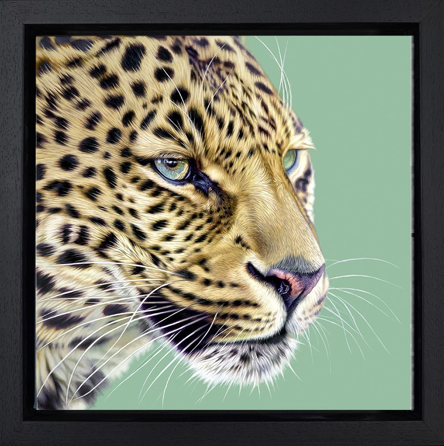 Game Face by Darryn Eggleton - Hand Finished Limited Edition on Canvas sized 14x14 inches. Available from Whitewall Galleries
