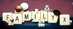Family by Doug Hyde - Limited Edition on Paper sized 30x12 inches. Available from Whitewall Galleries