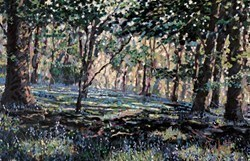 Bluebell Shadows by Timmy Mallett - Hand Finished Limited Edition on Canvas sized 28x18 inches. Available from Whitewall Galleries